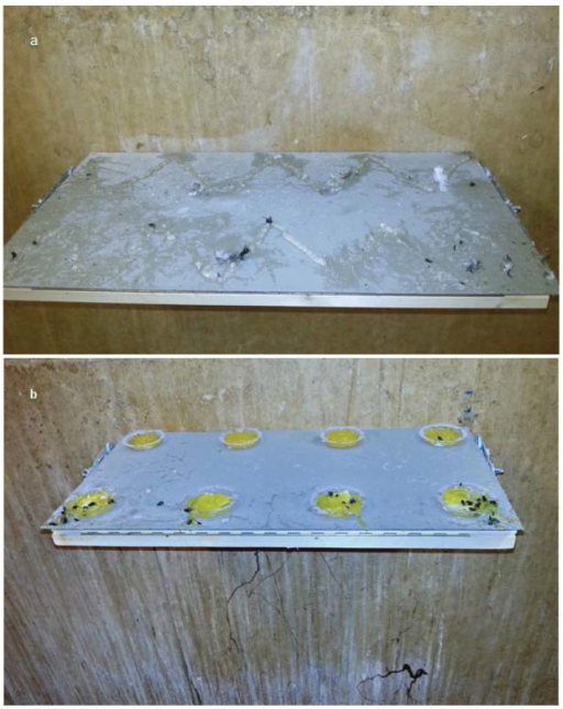 Appearance of the tactile gel (a) and the optical gel (b) after 23 days of application. Due to the adhesive effect numerous insects, feathers, dust and feces became stuck in the gels. The gluey optical gel got stuck on the wall underneath the experimental shelf when the pigeons stepped into the repellent and flew off pulling long adhesive strings. These remains were extremely difficult to remove.