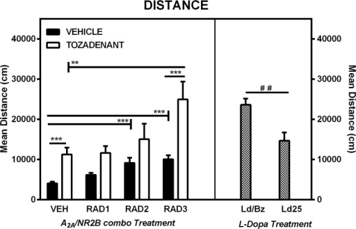 Distance traveled (Ethovision, Noldus) in an open-field of 6-OHDA lesioned rats.Comparison of the effect of three different doses of Radiprodil (1, 2 or 3 mg/kg) given in combination with a fixed dose of Tozadenant (30 mg/kg). For comparison, a dose of L-Dopa 14 mg/kg plus benserazide 3.5 mg/kg and a dose of L-Dopa 25 mg/kg (without benserazide) were also tested. RAD3/TOZ is significantly higher than TOZ and RAD3 (**, p<0.01, ***, p<0.001). VEH is significanly lower than RAD2, RAD3 and TOZ (***,p<0.001). L-Dopa/Benserazide is significantly higher than L-Dopa 25 mg/kg (##, p<0.01).