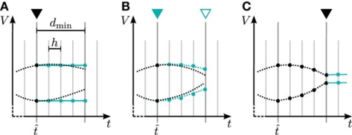 Iterative neuronal updates. Communication of spikes and gap-junction related data is carried out in steps of dmin (long gray lines), which denote the minimum synaptic transmission delay in the network. Within each communication interval neurons update their dynamics in steps of h (shorter light gray lines); here dmin = 4 h at time . Turquoise curves show the approximation of the membrane potential, which is used by the connected neuron to compute the solution in the current interval. (A) First iteration with constant approximation for the membrane potential of the connected neuron. At the end, a new approximation of the just computed membrane potential is passed to the connected neurons. (B) Further iteration with the approximation of the membrane potential from last iteration. This part is the actual iteration process which can be done multiple times. (C) After the final iteration a constant extrapolation for the next time step is communicated.