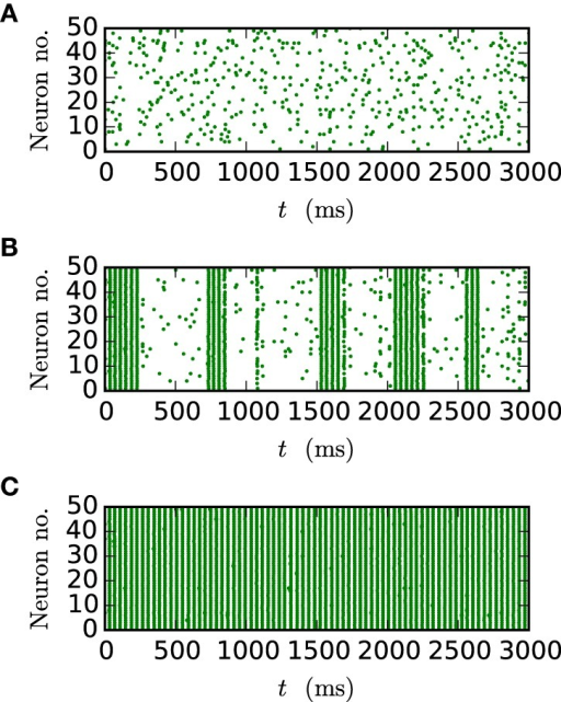 Spike patterns for different gap weights. The panels show the spike times of the first 50 neurons of the inhibitory network described in Section 2.3 (Test case 2) over 3 s of biological time for JI = −25 pA. All results were obtained with the iterative method with cubic interpolation and step size 0.05 ms. (A) gap weight g = 0.3 nS (B) gap weight g = 0.54 nS (C) gap weight g = 0.7 nS.