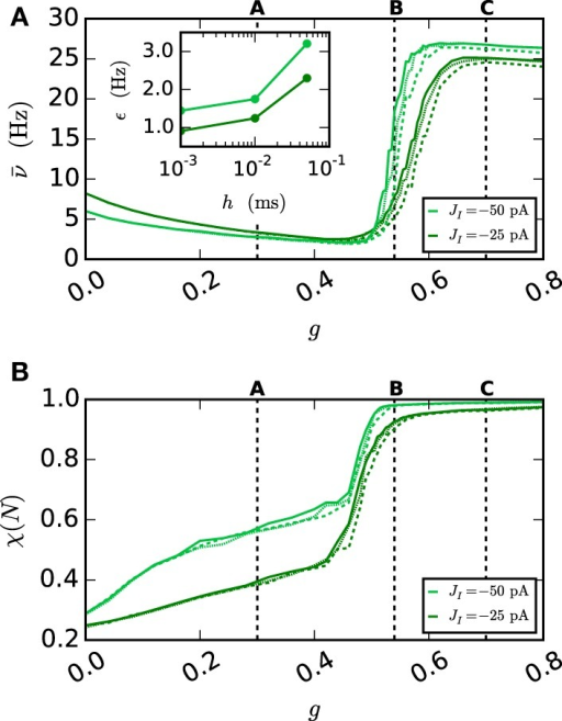Network behavior depending on the gap weight g. (A) The average spike rate ν and (B) the synchrony χ (Equation 10) of the neurons in the network, depending on the gap weight. The results for the iterative method with cubic interpolation are shown as solid curves (step size 0.05 ms) and for the single-step method with dashed (step size 0.05 ms) and dotted (step size 0.001 ms) curves. Two different synaptic amplitudes JI = −50 pA and JI = −25 pA were used, as indicated by the figure legend. The prelim_tol was chosen as 10−5 and the maximum number of iterations was not used as a stopping criterion. The simulation duration was 100 s (JI = −25 pA), respectively 180 s (JI = −50 pA) of biological time. The inset of (A) shows the difference between the results of the iterative method (step size 0.05 ms) and the results of the single-step method for different step sizes h measured by the RMSE. The dotted vertical lines correspond to the panels of Figure 9.