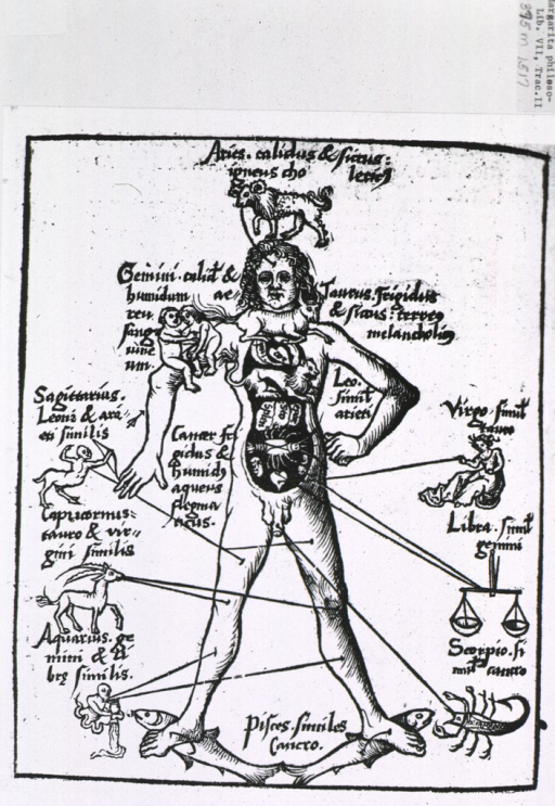 <p>The figure of a man with the signs of the zodiac connected to their corresponding body parts. The zodiac was thought to exert influence over the body and was therefore consulted for propitious times to apply such remedies as bloodletting.</p>