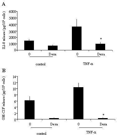 Effect of dexamethasone on TNF-α-induced IL-8 and GM-CSF release from eosinophils. Eosinophils were cultured with medium (control), or with TNF-α (20 ng/ml) (TNF-α) in the presence (Dexa) or absence (0) of dexamethasone (1 μM). IL-8 (A) and GM-CSF (B) release was evaluated by ELISA. Values are mean ± SEM (n = 5). *P < 0.05.
