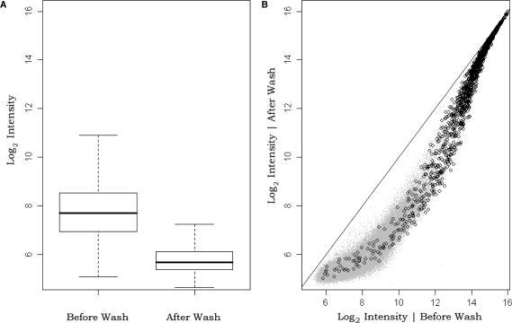 Washing effect for specific and non-specific signal. (A) A boxplot of non-specifically bound probes intensities before and after the stringent wash. (B) before- versus after-wash scatterplot of specifically and non-specifically bound probe intensities; gray dots represent non-specific and black circles represent specific probe intensities.