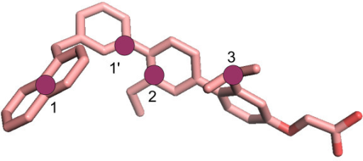 1-naphthyl therphenyl structure colored by atom type. The pharmacophoric points chosen for docking accuracy evaluation are shown as purple circles for CaM: 1, 1', and 2, and for HsCen2: 1, 2, and 3.