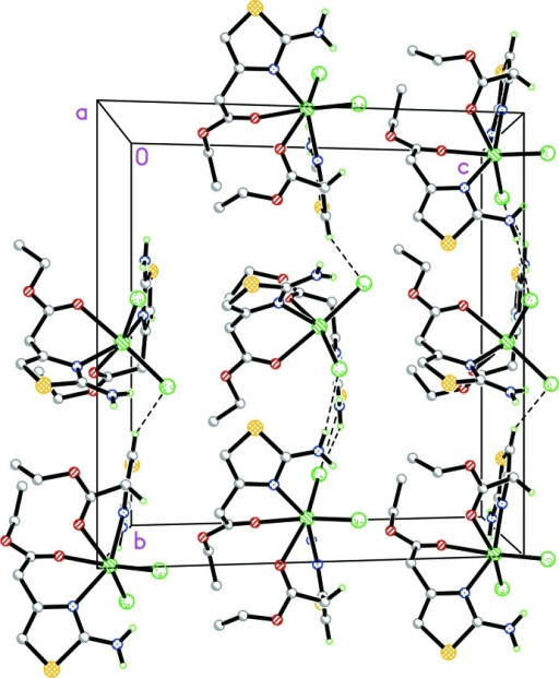 The crystal packing of the title compound viewed along the a axis. Intermolecular and intramolecular N—H···Cl and C—H···Cl hydrogen bonds are indicated by dashed lines. All hydrogen atoms not involved in hydrogen bonding were omitted for clarity.
