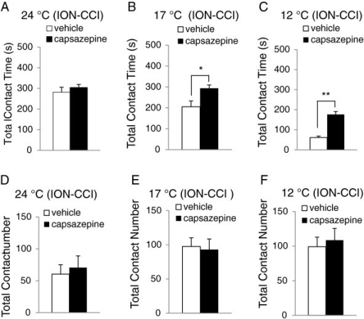 Effects of capsazepine on orofacial operant behaviors at cooling temperatures in ION-CCI rats. A-C) Total contact time of orofacial operant tests in ION-CCI rats at 24 °C (A, n=7), 17 °C (B, n=6), and 12 °C (C, n=6). D-F) Total contact number of orofacial operant tests in ION-CCI at 24 °C (D, n=7), 17 °C (E, n=6), and 12 °C (F, n=6). Open bars, vehicle injection; solid bars, capsazepine injection. Data represent Mean ± SEM; * p < 0.05; ** p < 0.01.