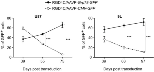 Persistence of gene expression from RGD4C/AAVP-Grp78 and silencing of RGD4C/AAVP-CMV-mediated gene delivery in cancer cells. U87 and 9L glioblastoma cells were stably transduced with RGD4C/AAVP-CMV-GFP or RGD4C/AAVP-Grp78-GFP vectors. Then GFP positive cells were monitored by flow cytometry over a period of 39 to 75 days post-transduction of U87 cells, and 39 to 97 days post-transduction of 9L cells. This experiment was repeated three times with similar results, shown are data of one experiment. Statistical analyses were performed by using GraphPad Prism software (version 5.0). Error bars represent standard error of the mean (s.e.m). p-values were generated by ANOVA and denoted as follows: *p < 0.05, **p < 0.01 and ***p < 0.001.