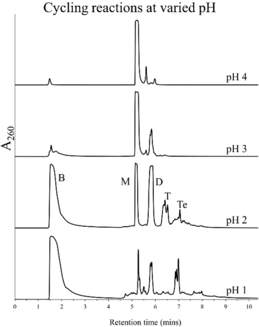 HPLC chromatograms obtained after seven DH-RH cycles using 5'-AMP (5 mM) and DLPC (1 mM) at specified pH values that were initially adjusted with H2SO4. Subsequent rehydrations were carried out with H2O. Polymerization is more efficient in reactions performed at a pH of 2 or below.