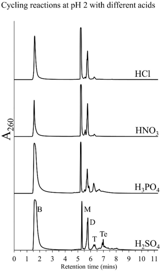 HPLC chromatograms obtained from Cyc7 samples of DH-RH reactions of 5'-AMP (5 mM) and POPC (1 mM) performed with various acids including HCl, H2SO4, HNO3, and H3PO4, at pH 2. Polymerization using H2SO4 and H3PO4 resulted in oligomers, while not much was observed with HCl and HNO3.