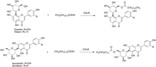 Acylation of orientin, virexin, isoorientin, and isovitexin with CALB.