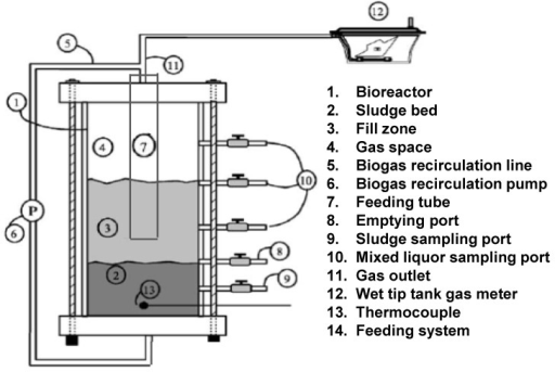 Schematic diagram of the sequence batch reactor.