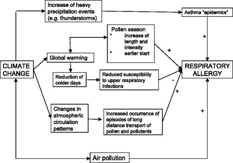 Possible effects of climate change on respiratory allergy. Source: Lorenzo Cecchi, original drawing