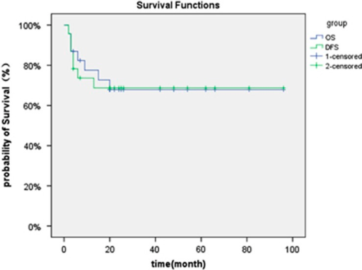 Probability of overall and disease-free survival.