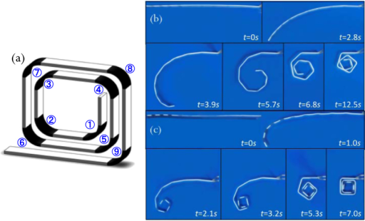 (a) The schematic graph of the helical SMP component. Series of photographs showing the shape recovery process of the helical SMP component (a) with uniform hinge sections, and (c) with graded hinge sections.