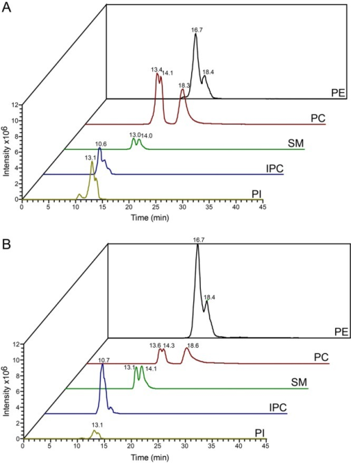 Comparison of chromatograms of the most intense molecular species of different phospholipid classes acquired in negative ionisation mode. Total ion chromatograms and retention times of the three most intense species of PE, PC, SM, IPC and PI of lipid extracts from whole cells (A) or isolated flagella (B).