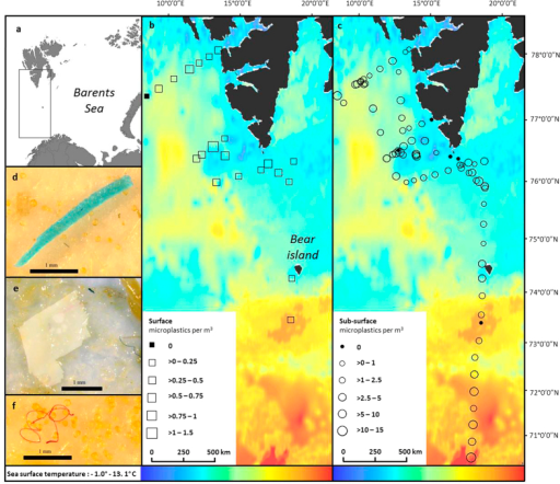 Map of sample locations during research cruise (created using ArcGIS) and example microplastic pictures.(a) Location of survey area, (b) surface sampling positions and microplastic abundance per m3, (c) sub-surface sampling positions and microplastic abundance per m3, (d) plastic fragment, (e) plastic film, (f) plastic fibre. SST source satellite data from: JPL OurOcean Project. 2010. GHRSST Level 4 G1SST Global Foundation Sea Surface Temperature Analysis. Ver. 1. PO.DAAC, CA, USA. Dataset accessed [2015-08-03] at http://dx.doi.org/10.5067/GHG1S-4FP01.