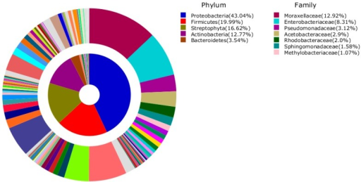 Average composition of bacteria from all samples (inner area: Phylum, outer area: Family). Phyla and Families with more than 1% of their proportion were represented.