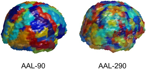 Depiction of AAL-90 parcellation and a hierarchical subparcellation with 290 brain regions. The subregions are constructed from resting state fMRI data of healthy controls (outside of the current sample) based on functional characteristics with anatomical constraints to keep subregions contiguous and bounded within a single region.