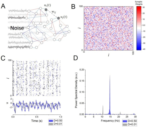 Frequency transitions in a random network of spiking neurons.A. Schematic illustration depicting some features of the network model, in which interconnected cells are driven by independent sources of noise. Individual cells are connected via excitatory (red) and inhibitory (blue) synaptic connections. B. Synaptic connectivity matrix. Weights are randomly distributed around a mean value g (See Eq 2). C. Sample network activity, in which neurons spike timing is modulated by global, slow-wave synchronous oscillations in both low (grey; D = 0.01) and high (blue; D = 0.50) input conditions. Faster and more irregular firing modulations characterize the high-input state. D. Power spectral density of the network mean activity  in low (grey; D = 0.01) and high (blue; D = 0.50) input conditions. Other parameters are α = 100Hz, β = 300mV, g = −10mV/Hz, s = 20mV/Hz, τ = 25ms.
