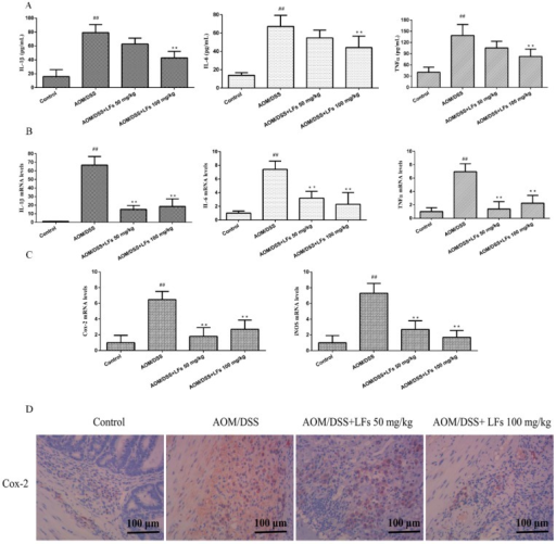 Effects of LFs on pro-inflammatory cytokines and mediators. (A) Interleukin-1β (IL-1β), Interleukin-6 (IL-6), and Tumor Necrosis Factor-α (TNF-α) levels in serum. ELISA kits specific to each cytokine were used to detected levels of IL-1β, IL-6, and TNF-α in serum. Data are presented as mean ± SD. ** p < 0.01 vs. model, ##p < 0.01 vs. vehicle control; (B) mRNA levels of IL-1β, IL-6, and TNF-α in the colonic tissues. qRT-PCR analysis was carried out to evaluate mRNA levels of IL-1β, IL-6, and TNF-α. Data are presented as mean ± SD. ** p < 0.01 vs. model, ##p < 0.01 vs. vehicle control; (C) mRNA levels of cyclooxygenase-2 (Cox-2) and inducible nitric oxide synthase (iNOS) in the colonic tissues by qRT-PCR analysis. Data are presented as mean ± SD. ** p < 0.01 vs. model, ##p < 0.01 vs. vehicle control. (D) Immunohistochemical staining of Cox-2 in colonic tissues.