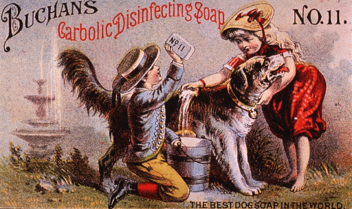 <p>Carbolic disinfecting soap &quot;kills all parasitic life on man or beast,....&quot;  Visual motif:  Two children give a large dog a bath using Buchan's No. 11 soap.</p>