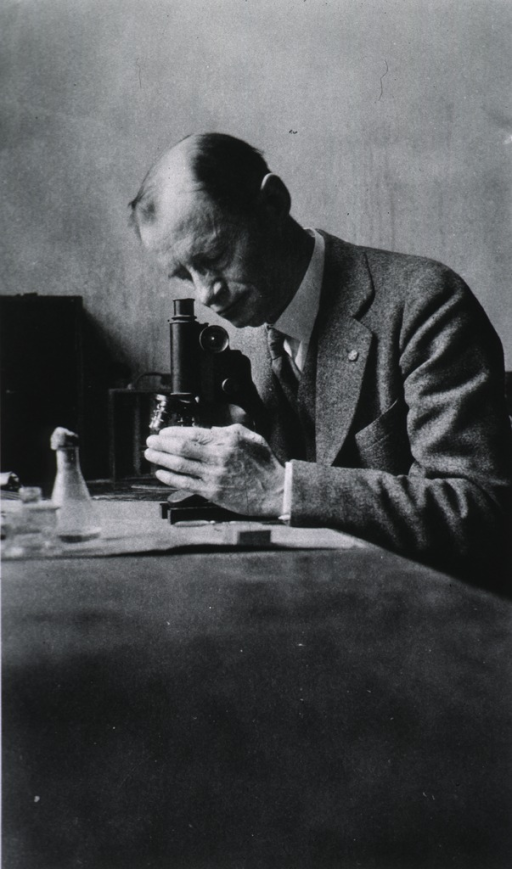 <p>Half-length, seated at table with microscope, left pose.</p>