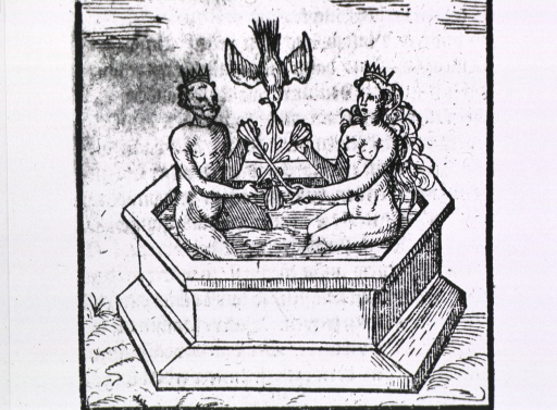<p>A man and a woman, both wearing crowns, are sitting in a mercury bath; they are holding long stemmed flowers which they have crossed so that each can hold one end of the other's flower; a diving bird holds a third flower between the others.</p>
