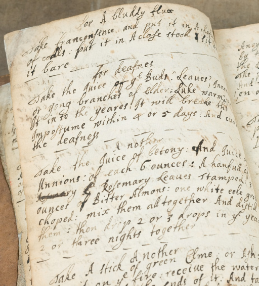 <p>A handwritten page of the diary features recipes to treat &quot;a bluddy flux&quot; and deafness.</p>