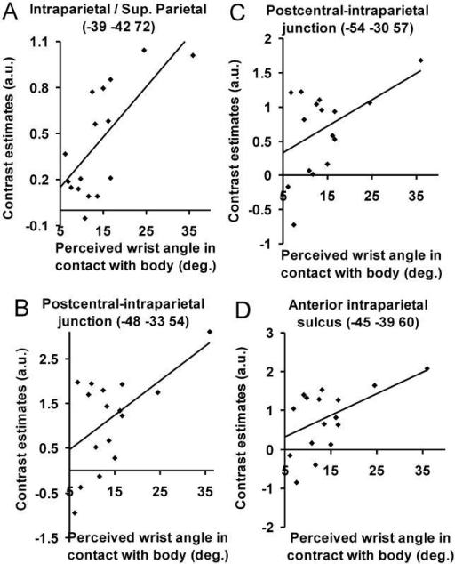 Linear Relationship between Parietal Activity and the Strength of the Shrinking-Waist IllusionEach dot represents the values for one individual subject. The data is fitted with a least-squares regression line. In (A) and (B) we plot the activity from the peaks in the intraparietal region that showed the most significant relation between illusion strength and neuronal activity ([A]: x = −39, y = −42, z = 72, t = 3.81; p < 0.001 uncorrected, R2 = 0.4916, Pearson's R = 0.70; [B]: x = −48, y = −33, z = 54; t = 2.69; p < 0.009 uncorrected, R2 = 0.32, Pearson's R = 0.57). These peaks were identified by using SPM2 to search for parietal voxels using a second-level linear regression model. (C) and (D) show the relationship between illusion and activity at exactly those peak voxels detected in the interaction analysis (see Figure 2). (C) shows the cortex at the junction between the postcentral sulcus and the intraparietal sulcus (p < 0.027, y = 0.0385x + 0.1424, R2 = 0.23, Pearson's R = 0.48), and (D) illustrates the anterior part of the intraparietal cortex (p < 0.016, y = 0.0552x + 0.0488, R2 = 0.27, Pearson's R = 0.52). In all plots the y-axis indicates the BOLD response (contrast estimates for interaction effect) in the parietal cortex, and the x-axis indicates the illusory displacement of the wrists when in contact with the body (which corresponds to the degree of waist shrinking). These regressions are not driven by outliers because all four remained significant (p < 0.05) when we used a least-square fitting procedure that minimizes the effects of outliers (Robustfit in MATLAB; see Results for details).