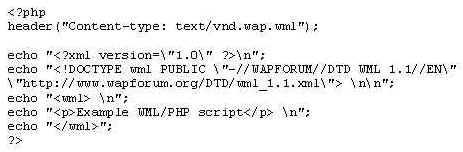 An example of the code to be entered in the header of the WML document for the web