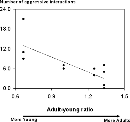 Aggression by young in relation to adult-young ratios in their family groups.N: number of aggressive interactions performed by young in 10 hours. Kendall partial coefficient correlation, p<0.02.