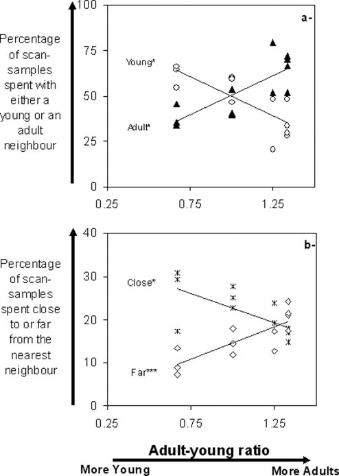 "Spatial relationships of young Przewalski horses with their nearest neighbour in relation to adult-young ratios.a- Time spent with either a young neighbour or an adult neighbour, in relation to the adult-young ratio, b- Time spent close to or far from the nearest neighbour, in relation to the adult-young ratio. Time is expressed in percentage of scan-samples recorded in the field. Black triangles: adults; white circles: young; white squares: far from nearest neighbour (farther than 3.5 Horse Body-Length); stars: close to nearest neighbour (less than 0.5 Horse Body-Length). Categories ""close"" and ""far"" are not exclusive alternatives. Kendall partial coefficient correlation: * p<0.05, *** p<0.01."