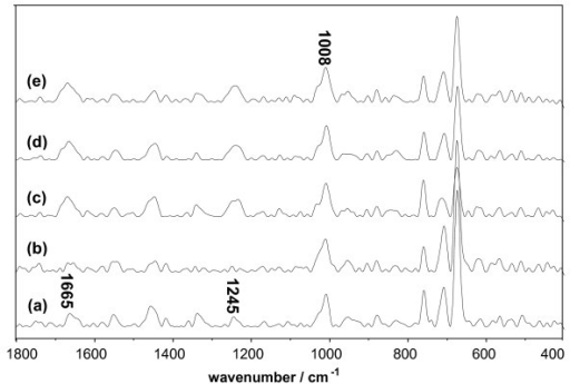 Raman spectrum of Lys system vs. the concentration of DMSO. The concentration of Lys was 1.5 × 10-5 mol/L. (a) Native Lys; (b) Lys and 10% DMSO; (c) Lys and 30% DMSO; (d) Lys and 50% DMSO; (e) Lys and 70% DMSO.