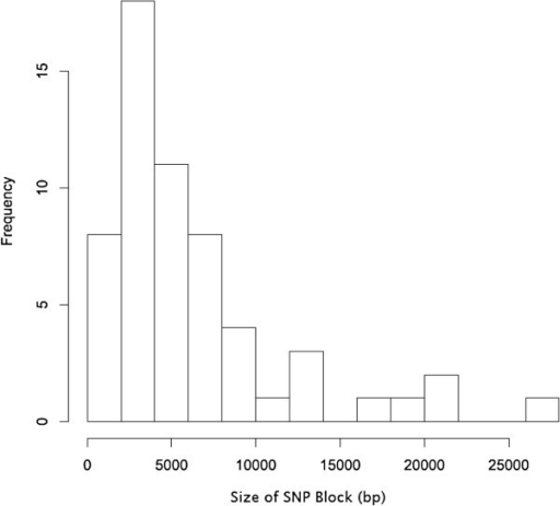 Size of SNP blocks found in the β1 group of Hib strains. This histogram represents the frequency of different sizes of SNP blocks (as defined in the text) in the genomes of β1 H. influenzae type b strains.