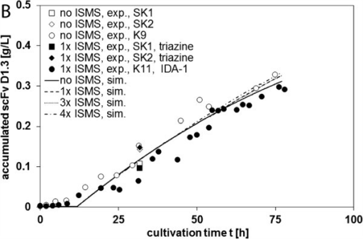 Overall comparison of the accumulated D1.3 concentrations obtained from cultivations with and without ISMS; symbols: measurements; lines: simulation (parameters from K11); theoretical simulated ISMS steps were equally distributed between 12 and 78 h.