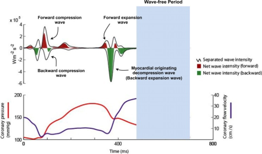 The Diastolic Wave Free Period A Window In The Card Open I