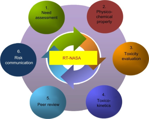 Six functional steps of the nanosafety process established by the Research Team for Nano-Associated Safety Assessment (RT-NASA).