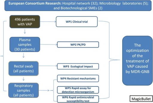 Workflow of the general project. SME. Small medium enterprise, VAP; Ventilator associated Pneumonia, WP; work package, pK/pD: pharmacokinetic/pharmacodinamic, MDR-GNB: multidrug resistant gram-negative bacteria.