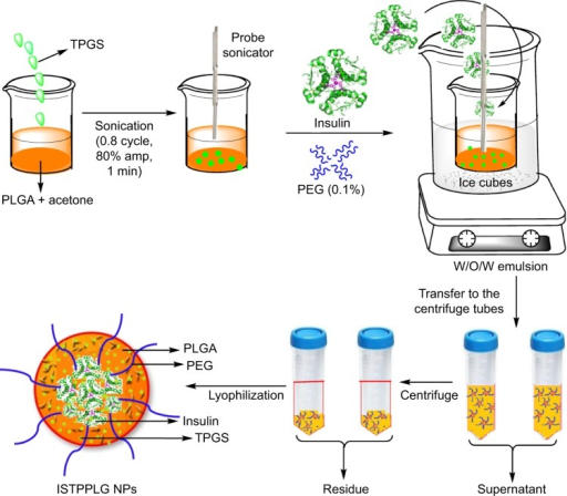 Synthesis of insulin-loaded TPGS-emulsified PEG-capped PLGA nanoparticles.Abbreviations: PEG, poly(ethylene glycol); PLGA, poly(lactic-co-glycolic) acid; TPGS, tocopherol poly(ethylene glycol) 1000 succinate.