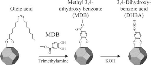 Scheme of the ligand-exchange reaction on the surface of oleic-acid-modified TiO2 nanocrystals to produce DHBA-TiO2 nanocrystals.