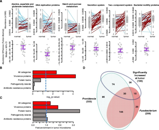 Differentially abundant pathways and enzyme classes between matched normal and colorectal tissue microbiomes. a Boxplots with corresponding paired dotplots indicating the relative abundances of several pathways showing differential abundance between tumor and normal samples. Lines connect the abundance in the normal (left) and tumor sample (right). Line colors indicate the directionality of the abundance change (blue and red for decreased and increased abundance in the tumor relative to the normal, respectively). Below we plot the difference between the tumor and normal abundance as grey dots, with the purple line representing the 95 % confidence interval (95 % CI) and the mean. Values at 0 (grey dotted lines) represent no change between normal and tumor. b Barchart showing the p values (−log10 transformed) obtained from Fisher's exact test used to determine virulence category enrichment in the tumor-associated microbiome on the x-axis with the gene categories labeled on the y-axis. Red bars indicate significance by Fisher's exact test (p < 0.005) and gray bars indicate no statistical significance. The blue dashed line indicates the standard significance cutoff of p = 0.05. c Barchart from the analysis in panel (b), demonstrating the fold-enrichment of virulence protein-encoding genes in the tumor-associated microbiome. The x-axis is the fold enrichment of the different virulence enzyme classes within the tumor microbiome relative to the normal microbiome. The vertical blue dotted line placed at 1 indicates the point where there is no difference between the normal and tumor microbiomes. d Venn diagram indicating the numbers of shared virulence-associated genes among Providencia, Fusobacterium, and the set of statistically significantly increased abundance genes at the tumor