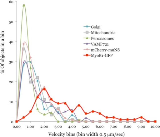 Velocity distribution profiles for organelles, VAMP721 vesicles, mCherry- μNS inclusion bodies, and MyoB1-GFP vesicle-like bodies in the presence of GUS (see legend to Fig 1).Distributions were plotted as % of objects exhibiting velocity range that falls in each bin of 0.5 μm/sec width.