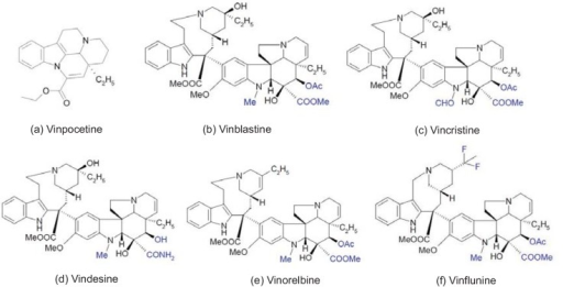 The chemical structures of alkaloid vincamine and 5 major vinca alkaloids. The vinca alkaloids' variations of substitute groups between them are highlighted in blue to clearly distinguish the differences.