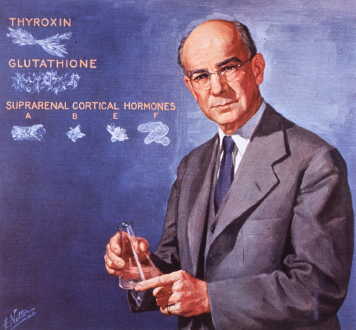 <p>Half-length, standing, left pose, full face; wearing glasses; holding flask with crystalline structures of Thyroxin, Glutathione, and Suprarenal Cortical Hormones in background.</p>