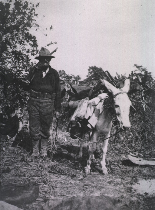<p>A soldier stands beside a donkey that was used during the Santiago Campaign.</p>