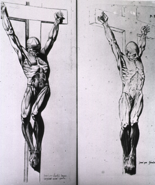<p>Two views of a male figure with musculature defined; visual motif: crucifixion.</p>