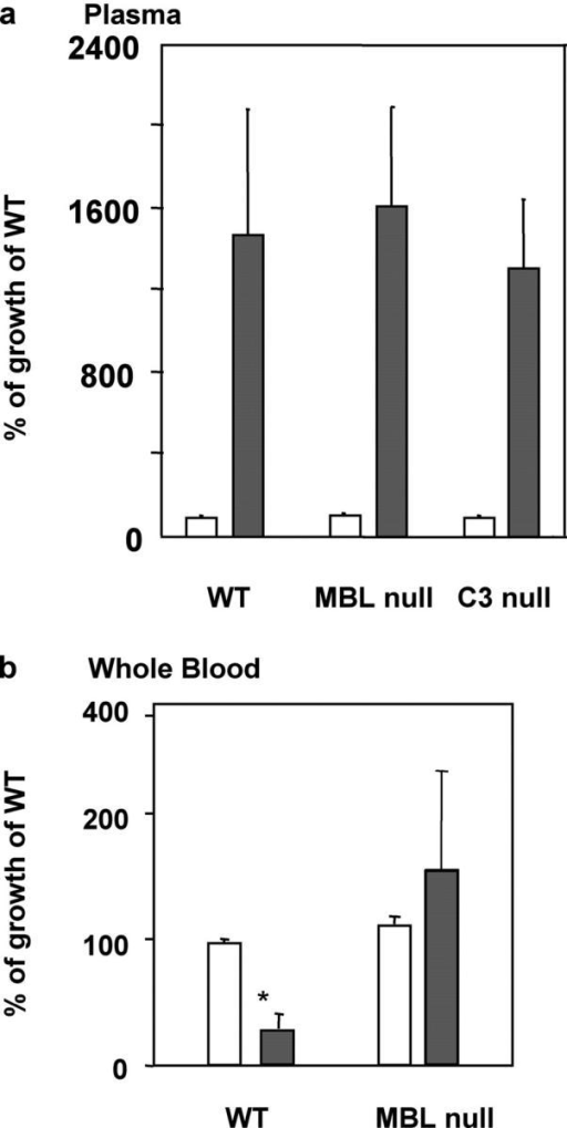 Restricted bacterial growth in blood of WT mice and enhanced growth in blood but not in plasma of MBL- mice. Open bars, at 10 min; closed bars, at 2 h. (a) Bacterial growth in plasma. Results are shown as a percentage of bacterial growth in WT plasma at 10 min. Pooled plasma was used and the assay was performed in triplicates as described in Materials and Methods. Bars indicate mean ± SD. (b) Results are shown as a percentage of bacterial growth in WT blood at 10 min. Blood was collected from four mice individually and the assay was performed in triplicates as described in Materials and Methods. Bars indicate mean ± SD. *, P < 0.05