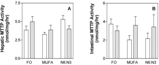 Hepatic (panel A) and intestinal (panel B) microsomal triglyceride transfer protein (MTTP) activity. The F1B (solid) and Golden Syrian (shaded) hamsters were fed fish oil (FO), monounsaturated fatty acid rich (MUFA) or N6:N3 diets. Animals were fed the specified diets for four weeks. Upon sacrifice, the liver and intestine were removed and snap frozen in liquid nitrogen and stored at -70°. Tissues were then analyzed for MTTP activity as described in the materials and methods section. Means for a variable with a different letter are significantly different (p < 0.05) by two-way ANOVA and the Newman-Keuls post-hoc test.