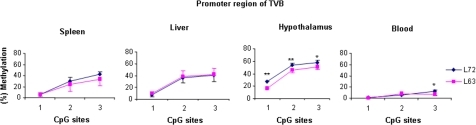 Results of quantitative DNA methylation analysis of inbred lines 63 and 72 in promoter region of TVB in spleen, liver, hypothalamus and blood.n = 5 for each line. **P<0.0001, * P<0.05.